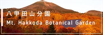 八甲田分園 Mt. Hakkoda Minute Gardens