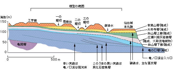 南側から見た植物園の地質断面図
