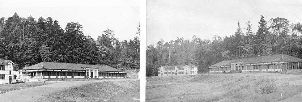 1960(昭和35)年当時の植物園の研究棟