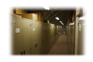津田記念館の標本室